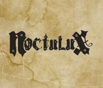 logo noctulux
